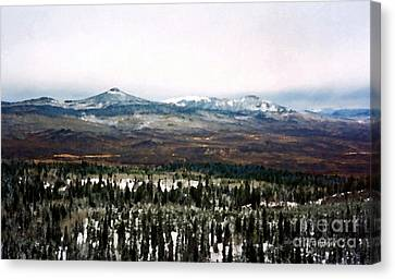 Distant Rockies Canvas Print
