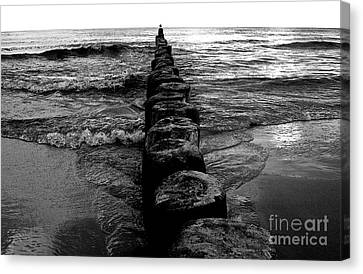 Distant Seagull Baltic Beach Canvas Print by Andy Prendy