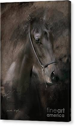 Distinguished Canvas Print