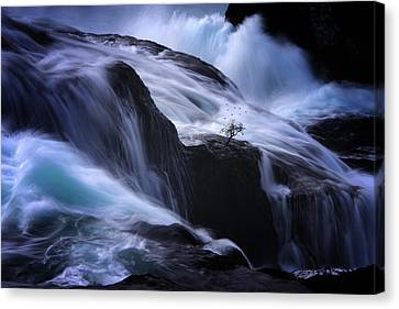 Canvas Print featuring the photograph Distractions by Philippe Sainte-Laudy