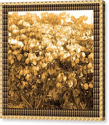 Surprise Canvas Print - Diva Gold Collection Flowers Exquisite Double Color Border Energy Filled Sparkle Decorative Art by Navin Joshi