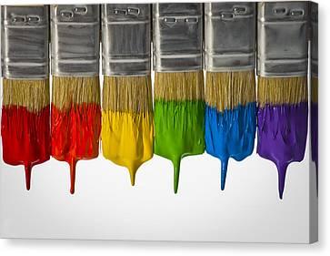 Diversity Paint Brushes Horizontal  Canvas Print by Don McGillis