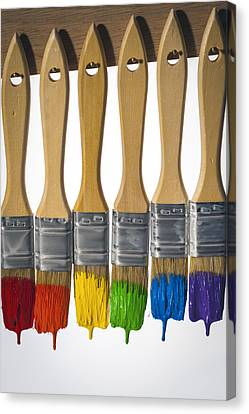 Diversity Paint Brushes Vertical Canvas Print by Don McGillis