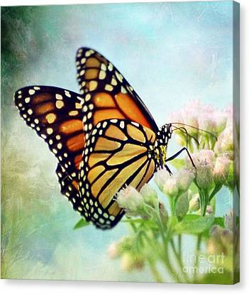 Divine Things Canvas Print by Kerri Farley