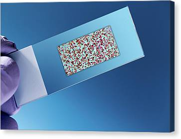 Dna Biochip Canvas Print