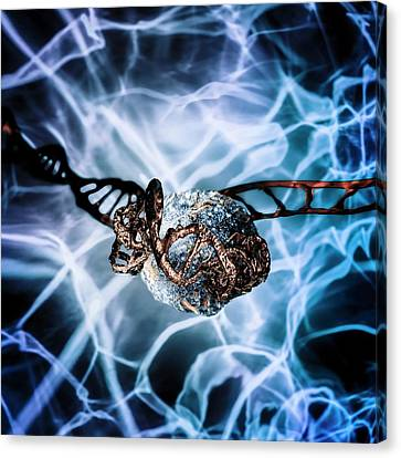 Helical Canvas Print - Dna Histone by Richard Kail