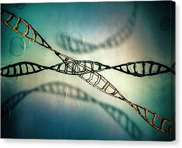 Helical Canvas Print - Dna Molecules by Richard Kail