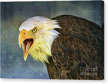 Canvas Print featuring the photograph Do It Or Else by Teresa Zieba