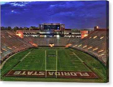 Mascots Canvas Print - Doak Campbell Stadium by Alex Owen