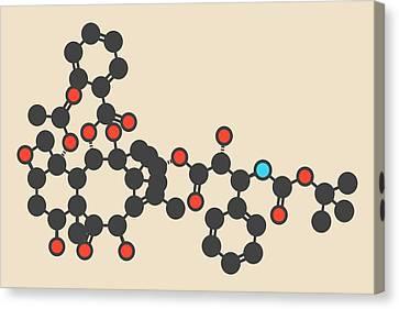 Docetaxel Cancer Drug Molecule Canvas Print by Molekuul