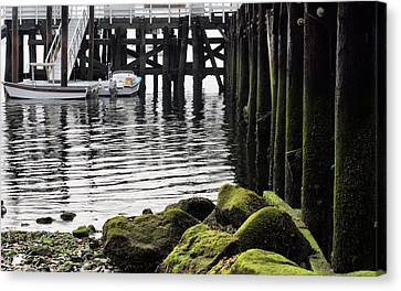 Dockside 2 Canvas Print by JC Findley