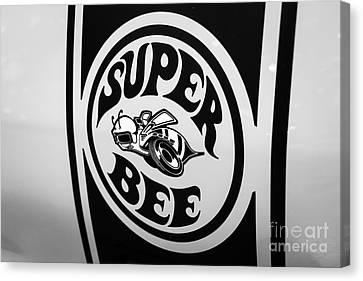 Dodge Super Bee Decal Black And White Picture Canvas Print by Paul Velgos