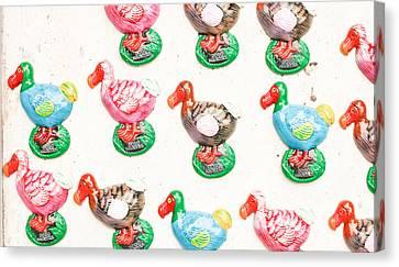 Dodo Souvenirs Canvas Print by Tom Gowanlock