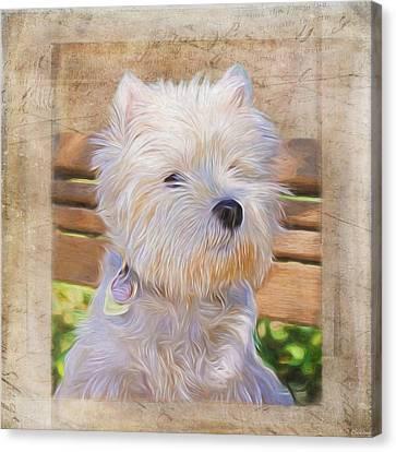 Dog Art - Just One Look Canvas Print by Jordan Blackstone