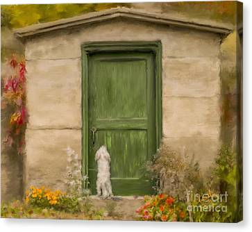 Dog At The Door Canvas Print by Andrea Auletta