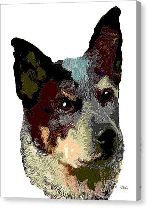 Dog Australian Cattle Dog Canvas Print by Dalon Ryan
