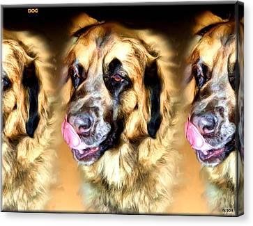 Canvas Print featuring the digital art Dog by Daniel Janda