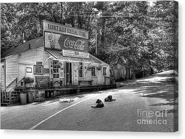 Dog Day Afternoon Bw Canvas Print by Mel Steinhauer