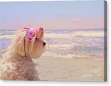 Dog Days Of Summer Canvas Print by Andrea Auletta