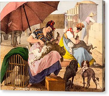 Dog Groomers, 1820 Canvas Print by French School