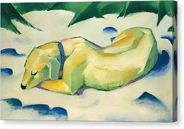 Dog Lying In The Snow Canvas Print by Mountain Dreams