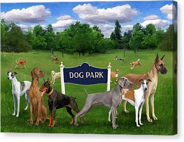Dog Park Canvas Print