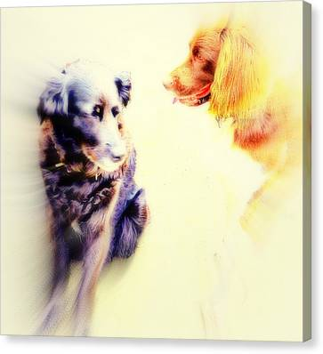 If You Are Dreaming Of A Dog Romance Dream Again  Canvas Print by Hilde Widerberg