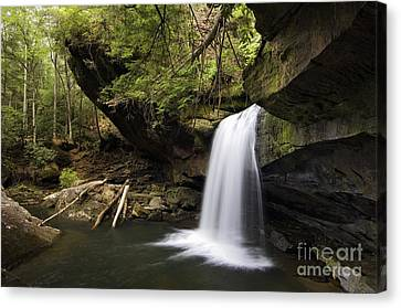 Dog Slaughter Falls - D002756 Canvas Print by Daniel Dempster