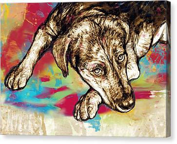 Dog Stylized Pop Modern Art Drawing Sketch Portrait Canvas Print