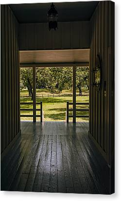 Dog Trot At Lbj Birthplace Canvas Print
