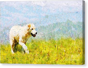 Dog Walking By Grass Painting Canvas Print by Magomed Magomedagaev
