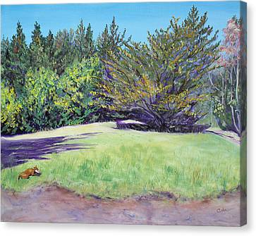 Dog With Bone In Spring Meadow Canvas Print