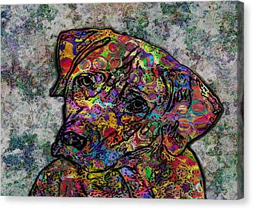 Dog With Color Canvas Print by Jack Zulli