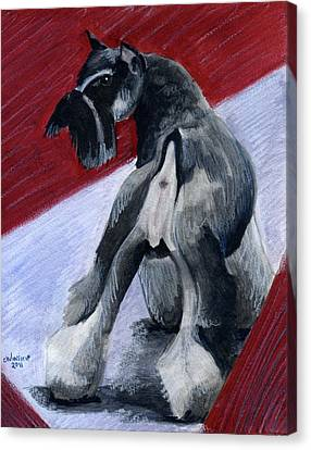 Standard Schnauzer Canvas Print - Doggie Butt by Christine Winship