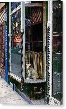 Doggy In The Window Version - 4 Canvas Print