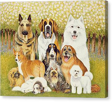 Dogs In May Canvas Print by Pat Scott