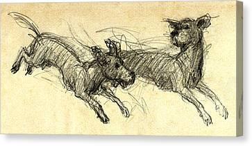 Dogsketch Canvas Print by Nato  Gomes