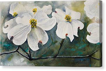Dogwood 7 Canvas Print