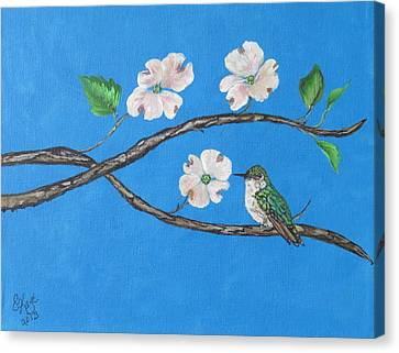 Canvas Print featuring the painting Dogwood And Hummingbird by Ella Kaye Dickey