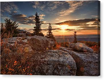 Canvas Print featuring the photograph Dolly Sods Morning by Jaki Miller