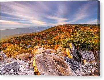 Dolly Sods Wilderness D30019853 Canvas Print