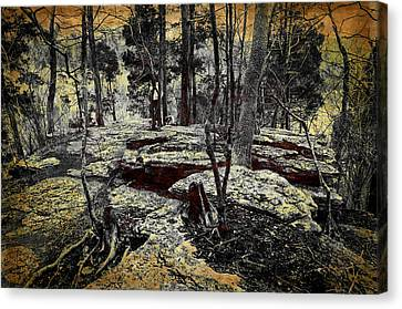 Dolomite Cliff Canvas Print by Diana Boyd