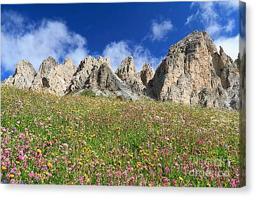 Canvas Print featuring the photograph Dolomiti - Flowered Meadow  by Antonio Scarpi