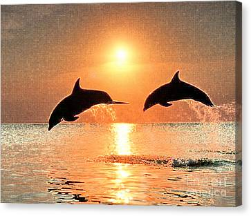 Dolphin Golden Sunset Canvas Print by Cadence Spalding