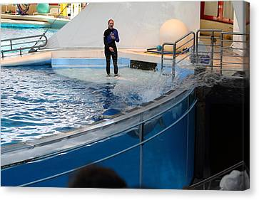 Dolphin Show - National Aquarium In Baltimore Md - 1212133 Canvas Print by DC Photographer