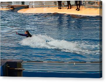 Dolphin Show - National Aquarium In Baltimore Md - 1212241 Canvas Print by DC Photographer