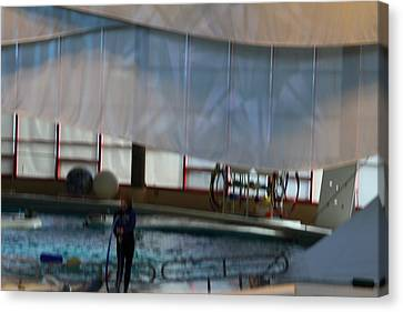 Dolphin Show - National Aquarium In Baltimore Md - 121272 Canvas Print by DC Photographer