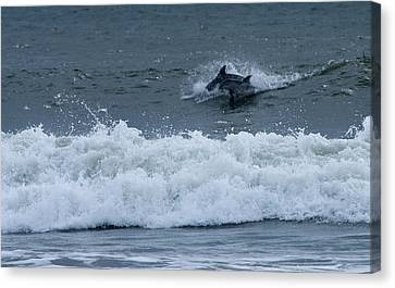 Canvas Print featuring the photograph Dolphins At Play by Greg Graham