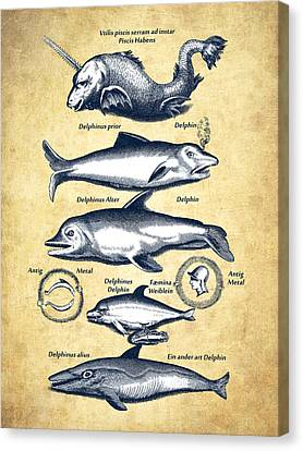 Dolphins - Historiae Naturalis - 1657 - Vintage Canvas Print by Aged Pixel