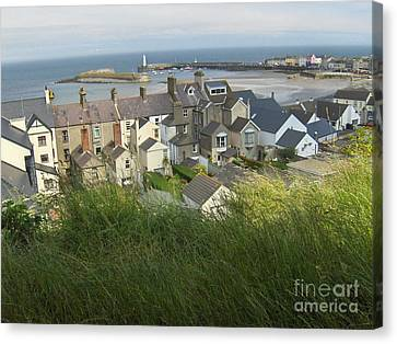 Donaghadee Northern Ireland View From The Moat Canvas Print by Brenda Brown